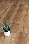 Виниловый ламинат Alpine Floor Real Wood ECO 2-1 Дуб Royal (Mineral Core)